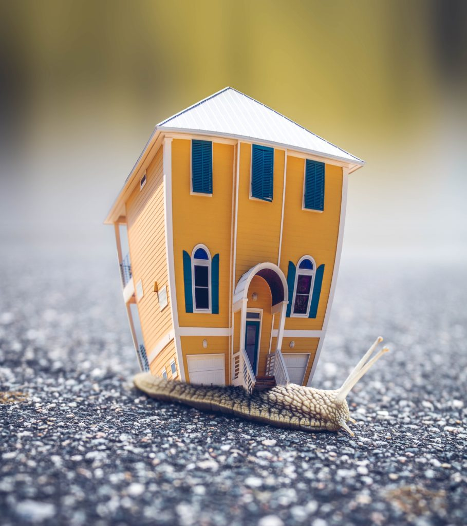 Maison sur escargot